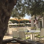 Photo of Club Med Djerba la Douce