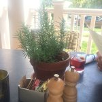 Fresh rosemary on every table