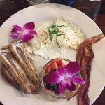 Fresh Vibes Cafe