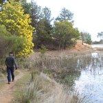 An easy, flat walk around the lake