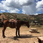 Ghost Ranch - O'Keeffe Landscape Tour