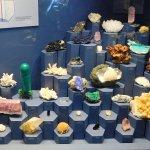 impressive rock/mineral collection