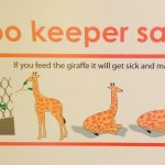 Safety First at Auckland Zoo!   Zoo Keeper Says