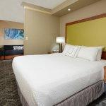 Foto de SpringHill Suites by Marriott Lynchburg