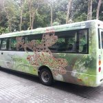 Treetops Complimentary Shuttle Bus ( To Town and CBD Area)