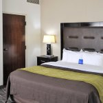Photo of Comfort Inn Downtown Charleston