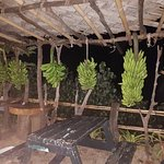 Bananas ripening