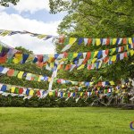 Buddhists flags around the monastery