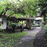 The resort's ground…