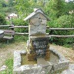 Photo of Azienda agricola Fonte de' Piani