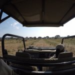On a game drive with Richard.