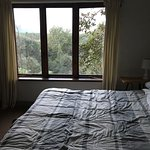Wild Spirit Lodge and Backpackers Foto