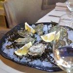 Fresh oysters - Свежие устрицы