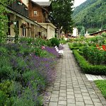 Le jardin