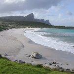 Foto de Cape of Good Hope