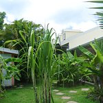 Photo of Residence Orcea