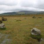 Gors Fawr Stone Circle
