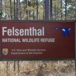 Felsenthal Nation Wildlife Refuge