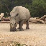 Photo de Parc Zoologique Henri de Lunaret