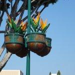 Foto de Downtown Disney
