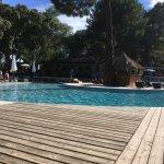 L'espace piscine/Bar