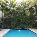 Photo de Parrot Key Hotel and Resort