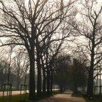 Winterliche Stimmung am Rheinufer