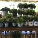 Photo de Flora's Field Kitchen