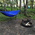 Walk-in Campsite 042