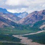 Photo de Denali National Park