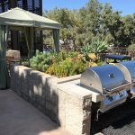 Areas to BBQ and dine ( or cook and take it to your room )