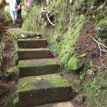 steps carved into the hillside