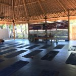 Photo of H20 Yoga and Meditation Centre