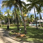 Photo of La Creole Beach Hotel
