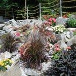 Bayern Park Blumen Deko