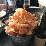 shell bucket