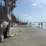 Boneyard Beach, Capers Island, 8/15/17