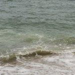 Coast Guard Beach Foto