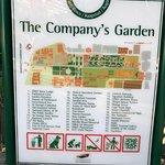Company's Gardens