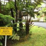 Entrance to Kilauea Lodge