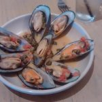green lip mussels