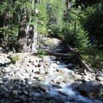 Shannon Falls Provincial Park Foto