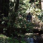 Fall Creek hike