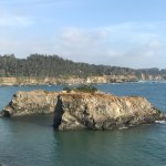 Photo of Mendocino Headlands State Park