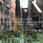 The Botanist. Wild. Foraged. Distilled.