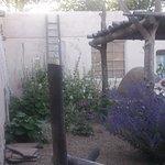 Side garden & bedroom walls