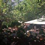 Photo of Dionysos Lodge