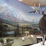 Photo of Denali Visitor Center