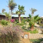 Abu Dabbab Lodge
