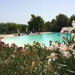 Foto de Residence Gli Stingi